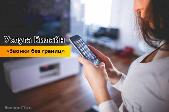 """Услуга Билайн """"Звонки без границ"""": описание"""