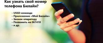 Как узнать свой номер телефона Билайн?