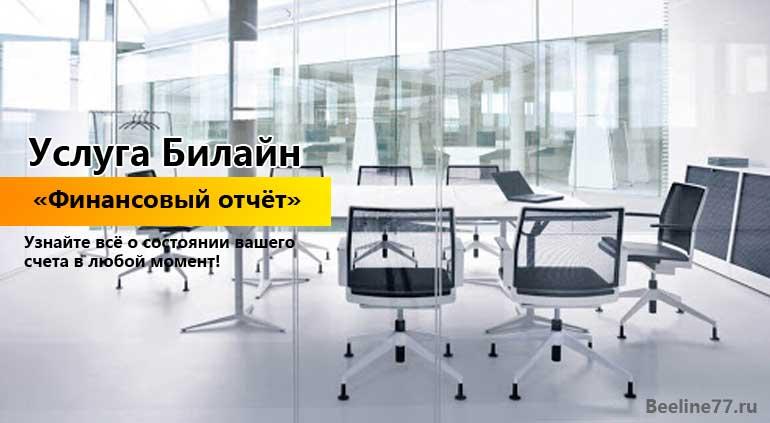Услуга Билайн «Финансовый отчёт»